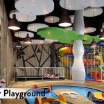 Indoor Play Ground Lavon Swan City